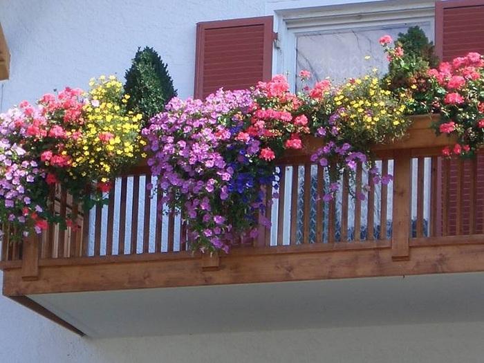 Посадка цветов в балконные ящики Посадка красивоцветущих или декоративно-лиственных растений в цветочные ящики не...