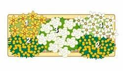 Идеи цветочных композиций для балконных ящиков.