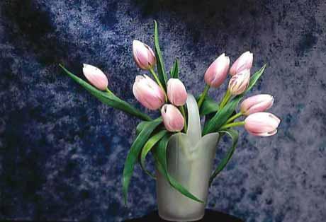 Что мы не знали о цветах и корнях/3352215_1306004407_3 (460x314, 62Kb)