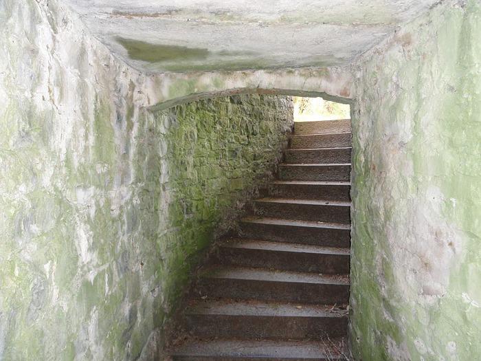 Замок Эшфорд (Ashford Castle) 81033