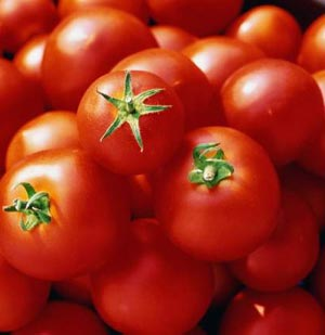 1275605495_tomato11 (300x309, 12Kb)