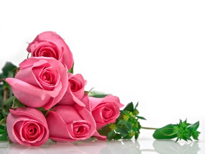 Розовые (700x525, 68Kb)