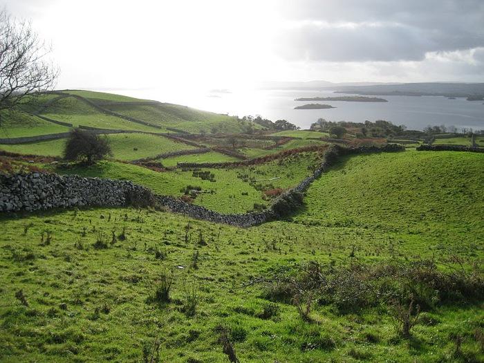 Ирландии посвящается... 77890