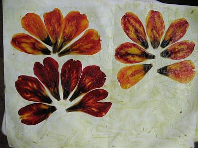 Тюльпаны 1 (400x300, 45Kb)