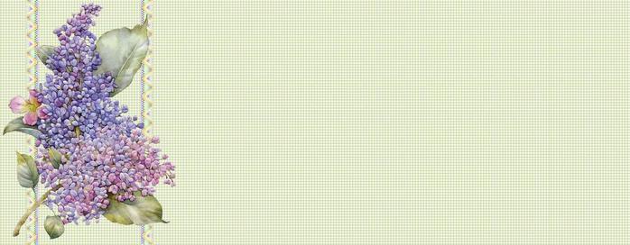 lilac25 (700x272, 34Kb)