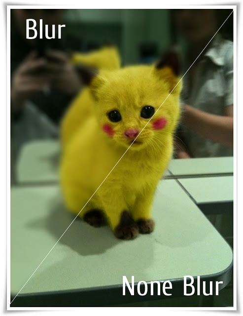 3686296_Pikachu (493x640, 56Kb)