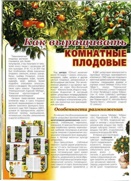 Нескучный сад №12 2011_16 (506x700, 109Kb)