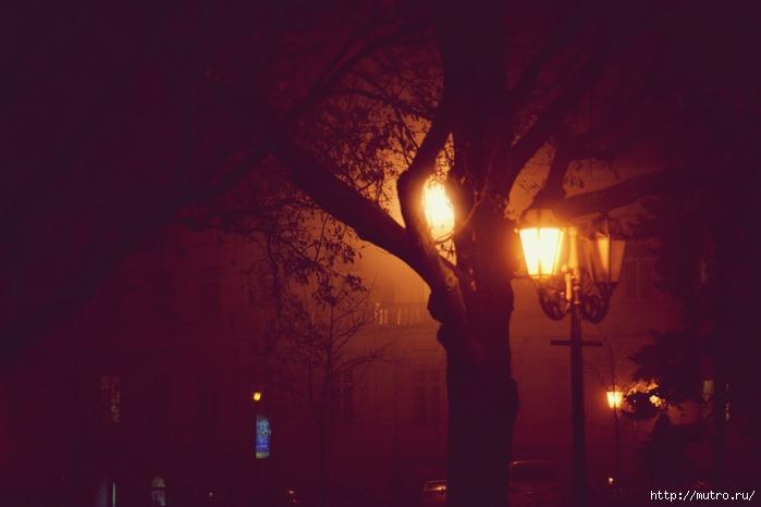 одесса в тумане, приморский бульвар