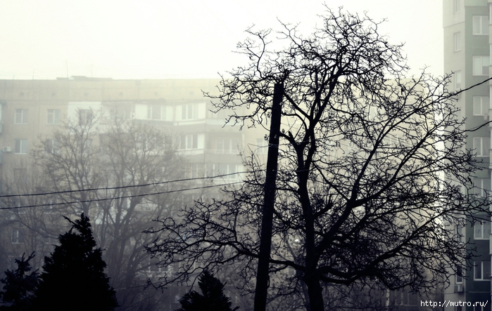 одесса в тумане, морвокзал