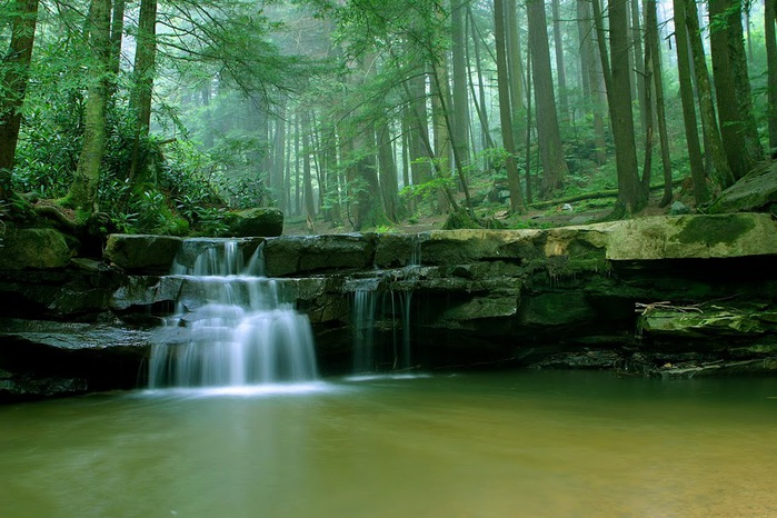 Swallow Falls State Park in Maryland USA 39477