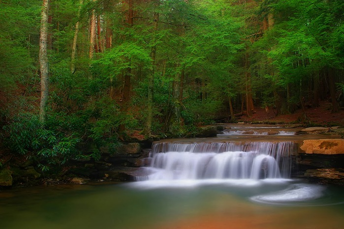 Swallow Falls State Park in Maryland USA 72360