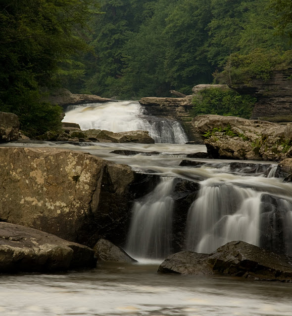 Swallow Falls State Park in Maryland USA 76252