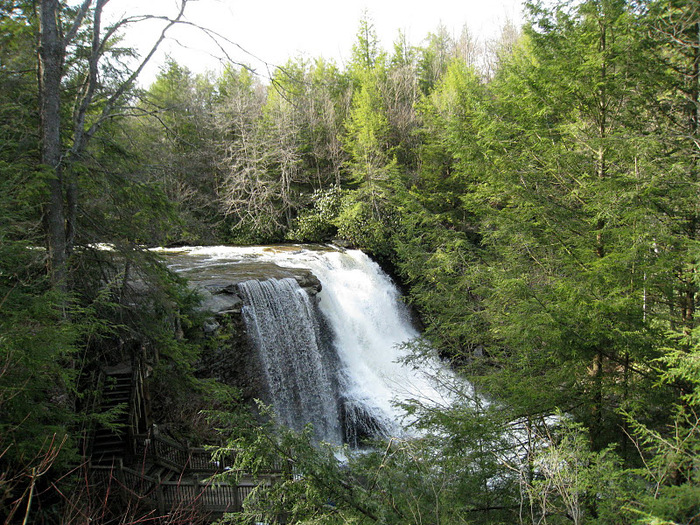 Swallow Falls State Park in Maryland USA 62299