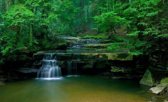 Swallow Falls State Park in Maryland USA 14717