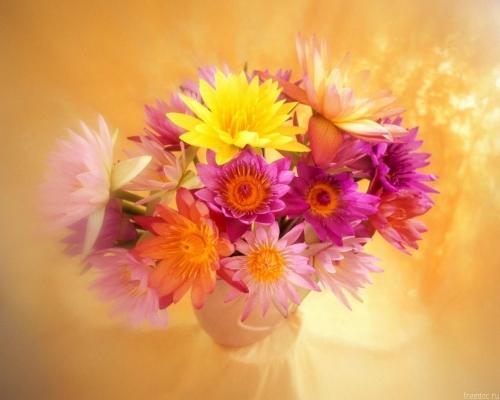 Нежность цветов
