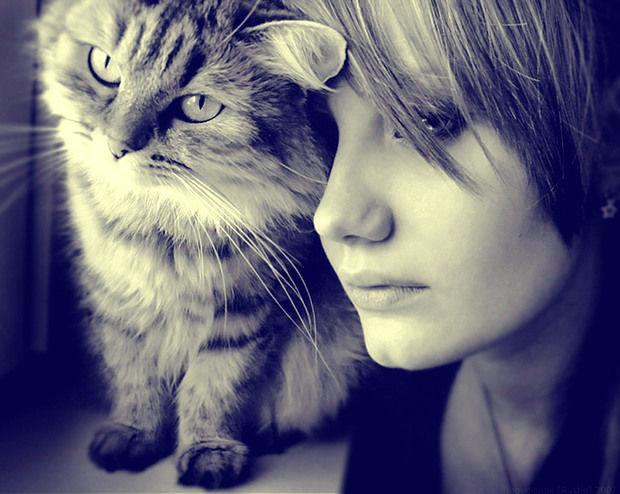 аватарки женщина кошка: