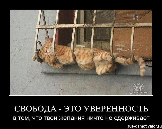 1302412854_svoboda-eto-uverinost (673x537, 56Kb)