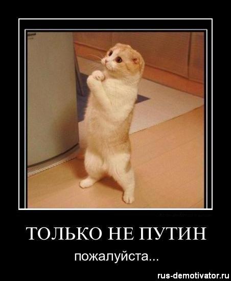 1323254938_tolko-ne-putin-pozhaluysta (452x550, 32Kb)