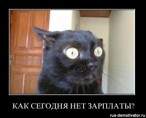 1323256547_kak-segodnya-net-zarplaty (584x471, 38Kb)
