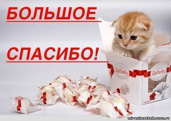 http://img0.liveinternet.ru/images/attach/c/2/82/868/82868666_spasibo.jpg