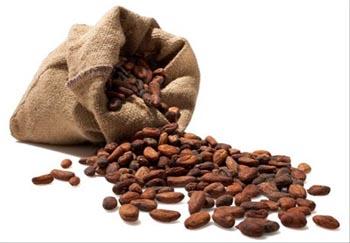 kakao-maslo2 (350x243, 30Kb)