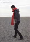 Превью шарф красный (493x700, 313Kb)