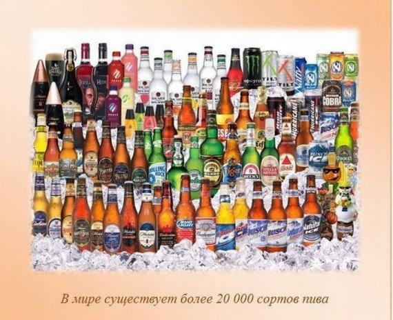 http://img0.liveinternet.ru/images/attach/c/2/82/903/82903216_large_i30.jpg
