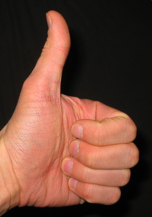 Thumbs_up (490x700, 107Kb)