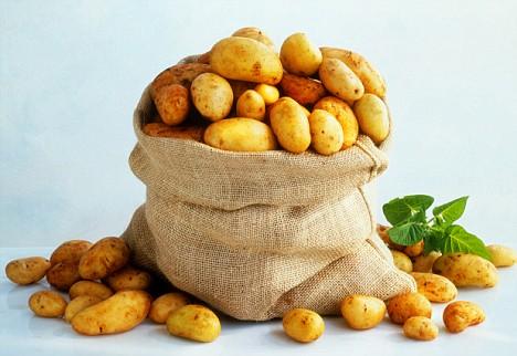 картошка (468x322, 46Kb)