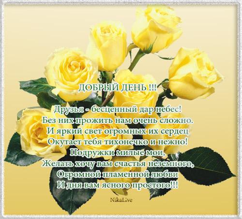 Друзья - бесценный дар небес! Добрый день (500x453, 114Kb)