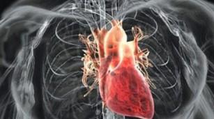 Искусственное сердце 2 (307x171, 19Kb)