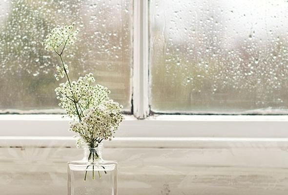 Зимнее окно с цветами фото