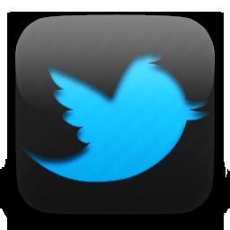 3736819_Twitter1 (256x256, 182Kb)