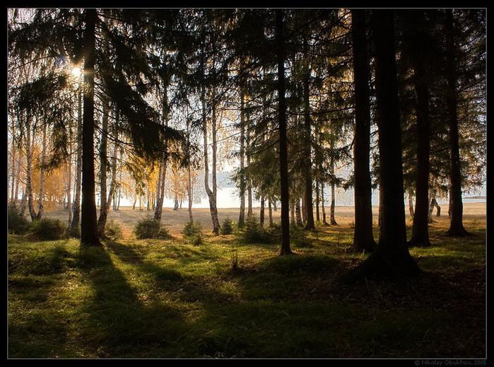 Волшебная красота природы 13 (700x519, 149Kb)