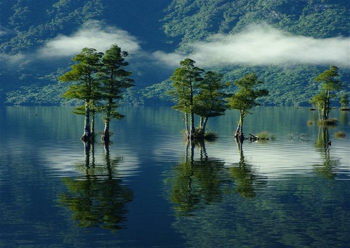 Волшебная красота природы 22 (700x497, 79Kb)
