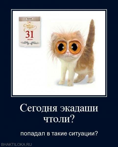 _20110527_1681505140 (481x600, 43Kb)