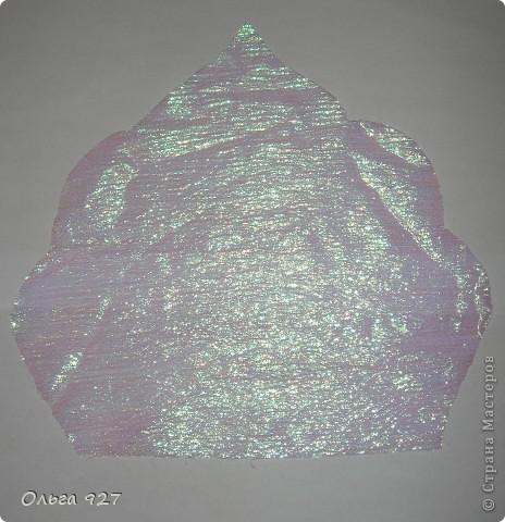 dscn8844 (464x480, 68Kb)