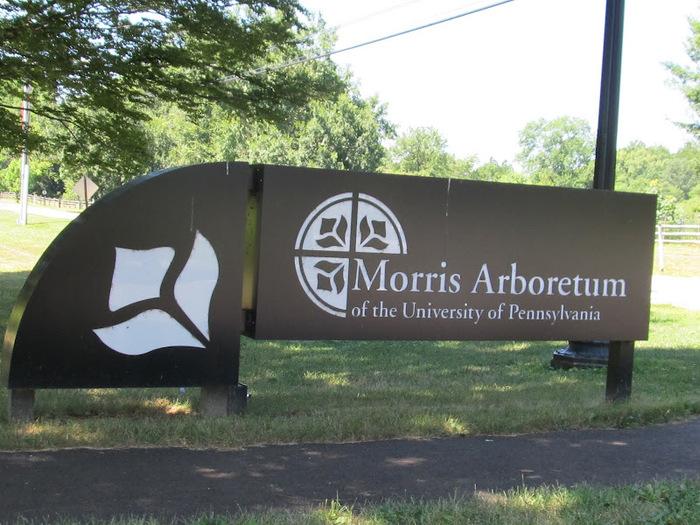 Общественный парк Morris Arboretum, Филадельфия 20980