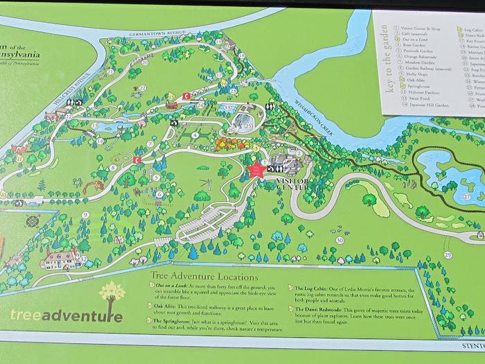Общественный парк Morris Arboretum, Филадельфия 31718