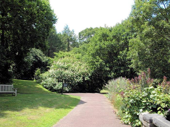 Общественный парк Morris Arboretum, Филадельфия 27824