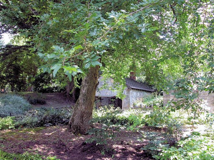 Общественный парк Morris Arboretum, Филадельфия 91877