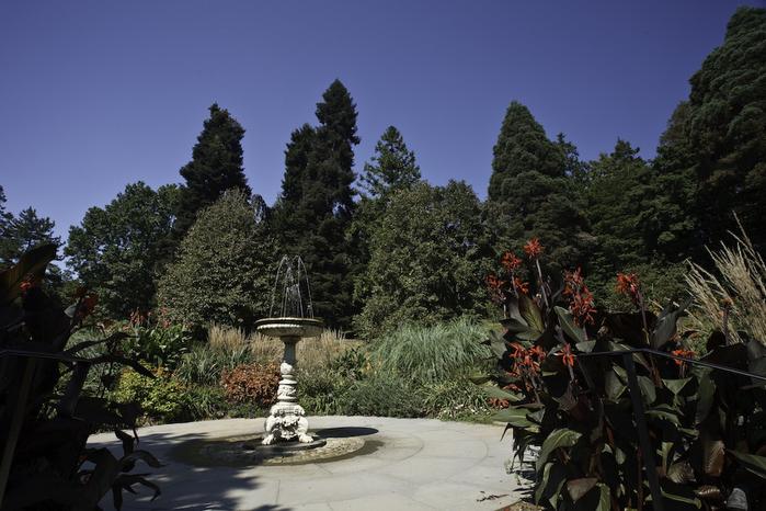 Общественный парк Morris Arboretum, Филадельфия 64350