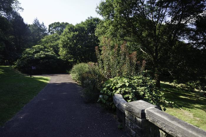 Общественный парк Morris Arboretum, Филадельфия 38674