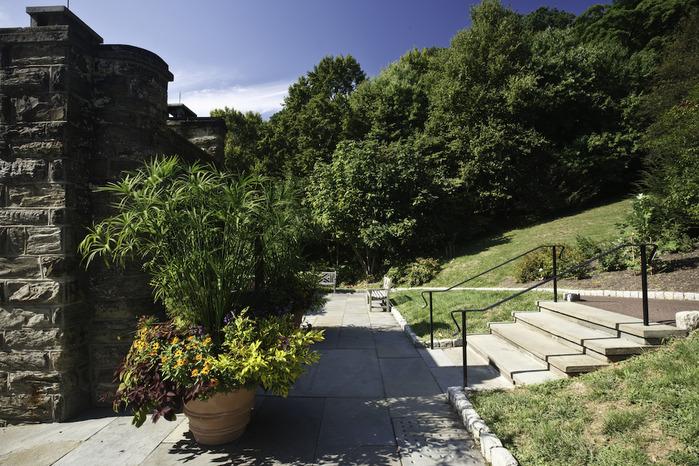 Общественный парк Morris Arboretum, Филадельфия 64996