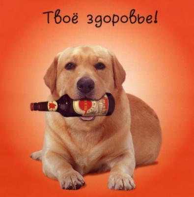 vizdoravlivai_03 (395x400, 15Kb)