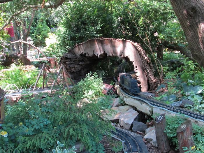 Общественный парк Morris Arboretum, Филадельфия 57726
