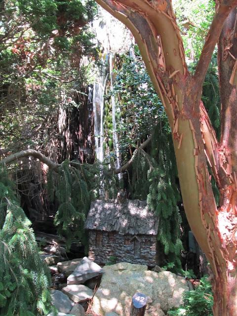 Общественный парк Morris Arboretum, Филадельфия 34737