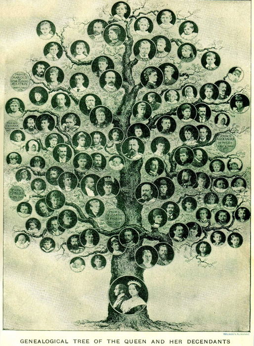 4497432_victoria_family_tree_1901 (514x700, 377Kb)