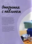 Превью Rospis_po_steklu-084 (514x700, 230Kb)