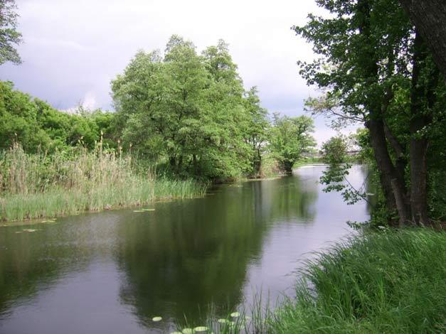 river_ilovlya2a (627x470, 52Kb)
